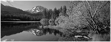 Lassen Peak reflections in the spring. Lassen Volcanic National Park (Panoramic black and white)