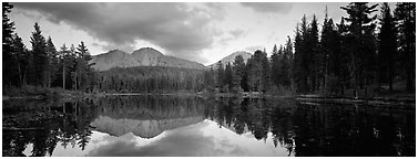 Volcanic peak and conifer reflected in lake. Lassen Volcanic National Park (Panoramic black and white)