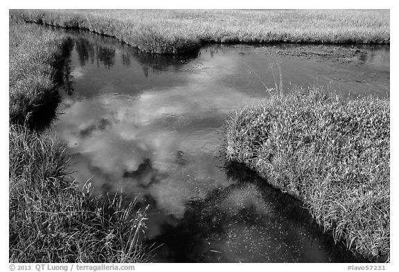 Cloud reflected in Kings Creek. Lassen Volcanic National Park (black and white)