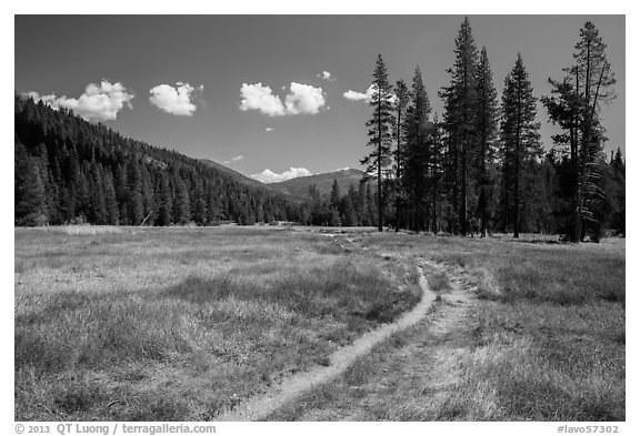 Trail, Warner Valley. Lassen Volcanic National Park (black and white)