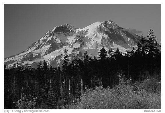 Mt Rainier at sunset from the west side. Mount Rainier National Park (black and white)