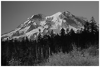 Mt Rainier at sunset from  South. Mount Rainier National Park, Washington, USA. (black and white)