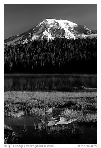 Mt Rainier reflected in Reflection lake, early morning. Mount Rainier National Park (black and white)
