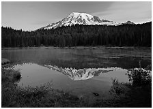 Mount Rainier reflected in lake at dawn. Mount Rainier National Park ( black and white)