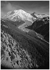 Valley fed by Mount Rainier glaciers, morning, Sunrise. Mount Rainier National Park, Washington, USA. (black and white)