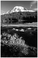 Mt Rainier and reflection, early morning. Mount Rainier National Park, Washington, USA. (black and white)