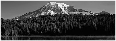 Mount Rainier raising above forest and lake. Mount Rainier National Park (Panoramic black and white)