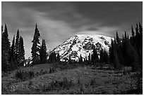 Moonlit Meadow and Mt Rainier. Mount Rainier National Park, Washington, USA. (black and white)
