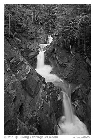 Cascades, Van Trump Creek. Mount Rainier National Park (black and white)