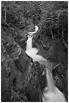Cascades, Van Trump Creek. Mount Rainier National Park, Washington, USA. (black and white)