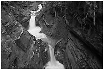 Van Trump Creek. Mount Rainier National Park, Washington, USA. (black and white)