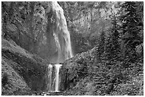 Forest and waterfall. Mount Rainier National Park ( black and white)