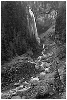 320-foot waterfall (Comet Falls). Mount Rainier National Park ( black and white)