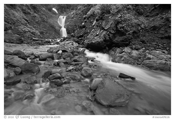 Creek and waterfall. Mount Rainier National Park (black and white)