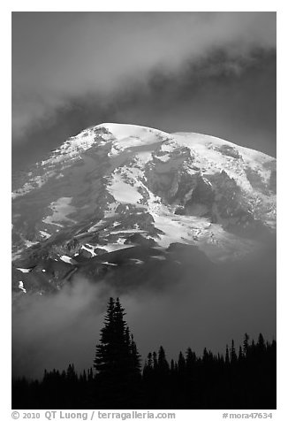 Mountain emerging from clouds. Mount Rainier National Park (black and white)