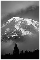 Mountain emerging from clouds. Mount Rainier National Park, Washington, USA. (black and white)
