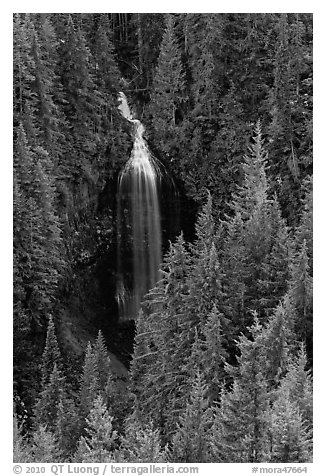 Martha Falls. Mount Rainier National Park (black and white)