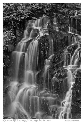 Water cascading over columns of volcanic rock. Mount Rainier National Park (black and white)