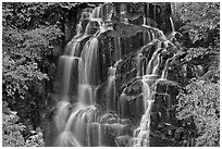 Waterfall over volcanic rock, Stevens Canyon. Mount Rainier National Park ( black and white)