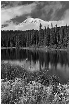Mount Rainier and clouds seen from reflection lakes. Mount Rainier National Park ( black and white)