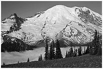 Meadow and Mt Rainier above fog-filled valley. Mount Rainier National Park, Washington, USA. (black and white)