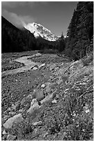 White River creek and Mt Rainier. Mount Rainier National Park, Washington, USA. (black and white)