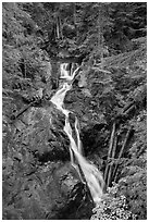 Deer Creek Falls. Mount Rainier National Park ( black and white)