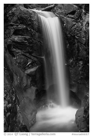 Christine Falls. Mount Rainier National Park (black and white)