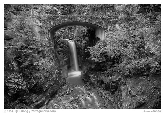 Road bridge and Christine Falls. Mount Rainier National Park (black and white)