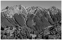 Steep forested peaks, North Cascades National Park. Washington, USA. (black and white)