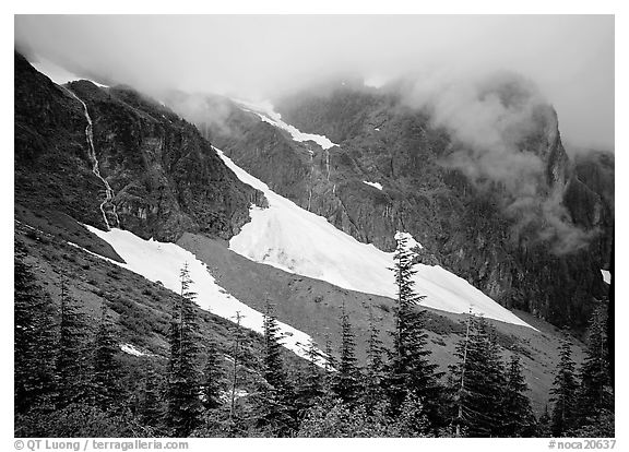 Cascades and snowfields, below Cascade Pass, North Cascades National Park.  (black and white)