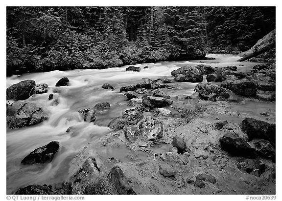 Creek near Kennedy hot springs. North Cascades National Park (black and white)