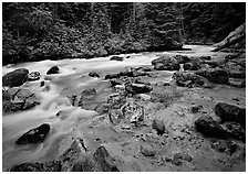 Creek near Kennedy hot springs, Glacier Peak Wilderness, Mt. Baker/Snoqualmie National forest. Washington (black and white)