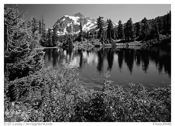 Mount Shuksan and Picture lake, mid-day. North Cascades National Park (black and white)