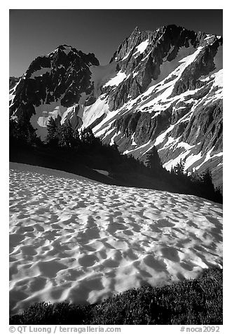 Late summer snow and peaks, Cascade Pass area, morning, North Cascades National Park.  (black and white)
