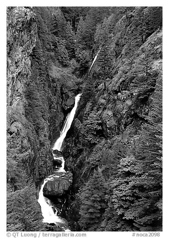 Waterfall in narrow gorge,  North Cascades National Park Service Complex.  (black and white)