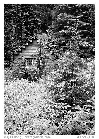 Log cabin, Mt. Baker/Snoqualmie National forest. Washington (black and white)