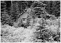 Log cabin, Glacier Peak Wilderness. Washington (black and white)