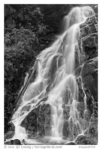 Waterfall along North Fork of the Cascade River, North Cascades National Park.  (black and white)