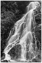 Waterfall along North Fork of the Cascade River, North Cascades National Park.  ( black and white)