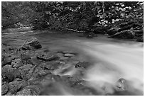 Smooth flow of North Fork of the Cascade River in the fall, North Cascades National Park.  ( black and white)