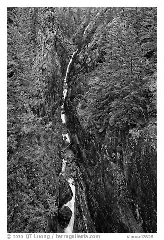 Gorge Creek Falls in autumn, North Cascades National Park Service Complex.  (black and white)
