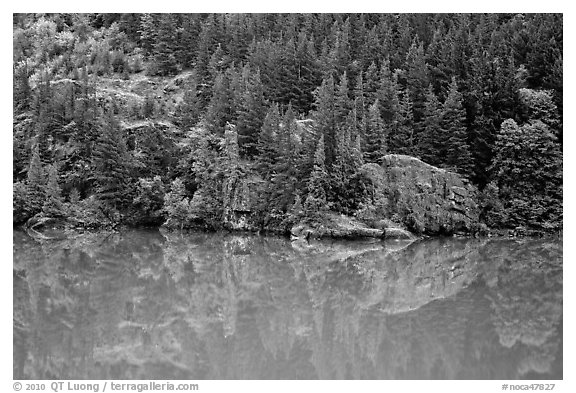 Forest reflected in turquoise waters, Gorge Lake, North Cascades National Park Service Complex.  (black and white)