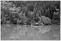 Forest reflected in turquoise waters, Gorge Lake, North Cascades National Park Service Complex. Washington, USA. (black and white)