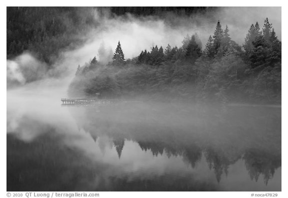 Fog trees, and pier, Diablo Lake, North Cascades National Park Service Complex.  (black and white)