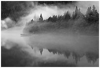 Fog trees, and pier, Diablo Lake, North Cascades National Park Service Complex. Washington, USA. (black and white)