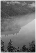 Turquoise waters and fog, Diablo Lake, North Cascades National Park Service Complex. Washington, USA. (black and white)