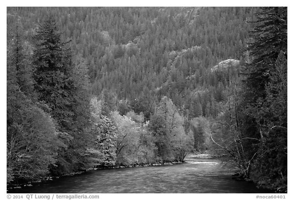 Skagit River in autumn, North Cascades National Park Service Complex.  (black and white)