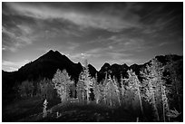 Larch trees and mountains from Easy Pass at night, North Cascades National Park.  ( black and white)