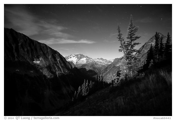Mount Logan from Easy Pass at night, North Cascades National Park.  (black and white)
